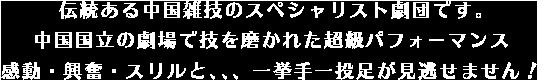 伝統ある中国雑技のスペシャリスト劇団、日本国内(東京・関西)拠点。中国国立の劇場で技を磨かれた超級パフォーマンス、感動・興奮・スリルと一挙手一投足が見逃せません!